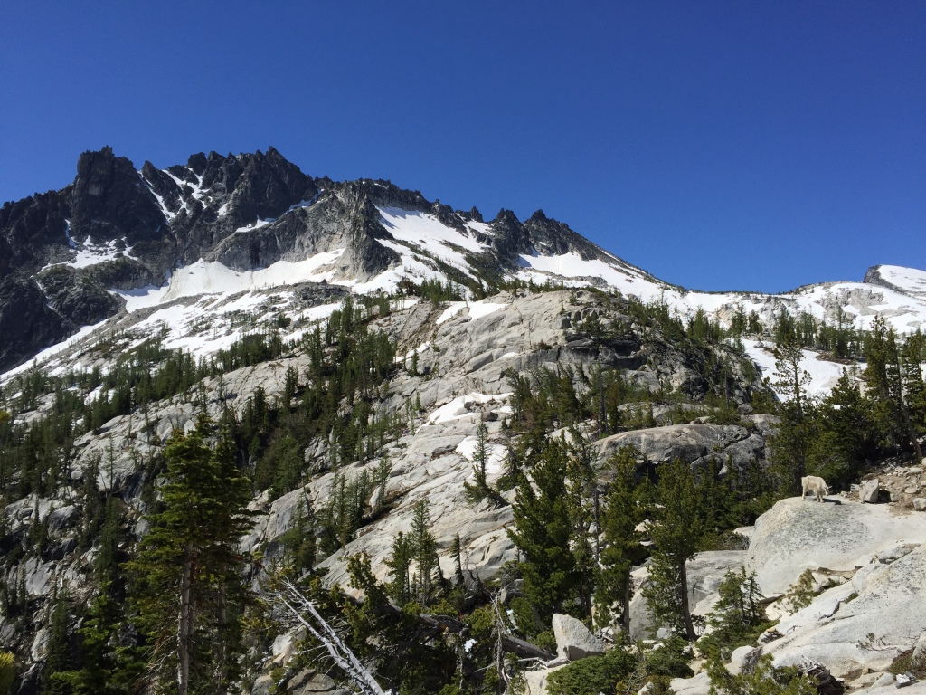 enchantments climb up 1